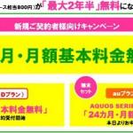 mineoの格安SIMが9か月間無料で使える太っ腹なキャンペーン実施中【格安sim】